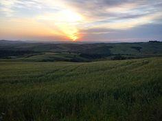 Have a wonderful evening #sunset #sunporn #sunnyday #italy #cosona #toskana #tuscany #nature_perfection #nature_of_our_world #naturephotography #beautiful #sunsetlovers #sunlight #explore #exploremore #nature #instagram #wanderers_ink by kathyprigge