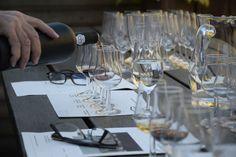 @bluscusES Os propone la posibilidad de mejorar vuestros conocimientos acerca del vino a través de una #cata comentada dentro de una #bodega gallega. ¡Conviértete en un experto del vino!