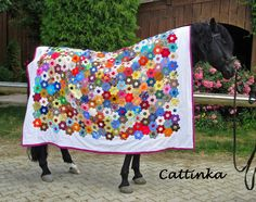 Cattinka.  Well-dressed horse