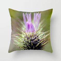 Buy Teen Thistle Flower Macro Throw Pillow by annaki. Worldwide shipping available at Society6.com. Just one of millions of high quality products available.