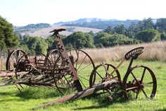 Old Farm Equipment . Sepia Art Print by Wingsdomain Art and Photography Antique Tractors, Vintage Tractors, Old Tractors, Vintage Farm, Farm Images, Old Farm Equipment, Heavy Equipment, Farm Photography, Farm Tools
