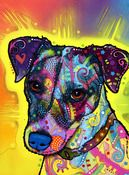 Image detail for -Image of Jack Russell Terrier PRINT