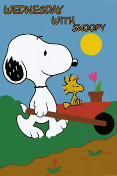 WEDNESDAY WITH SNOOPY...& WOODSTOCK!!