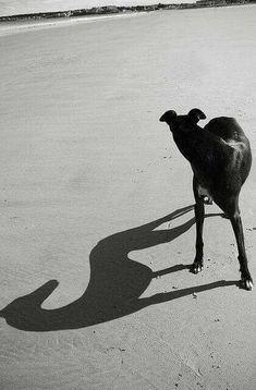 Black & White Photography Inspiration : Dale Yudleman