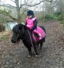 pink kp gear Equestrian, Gears, Cow, Pink, Animals, Animales, Gear Train, Animaux, Horseback Riding