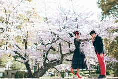 Beautiful cherry blossom engagement inspiration // Ghia Jun and Zee Yin's Engagement Shoot in Kyoto, Japan