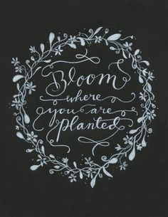 You Doll Art Calligraphy | Bloom Where You Are Planted