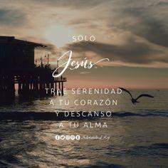 Solo Jesús trae serenidad a tu corazón y descanso a tu alma #frasescristianas #frasededios #frasedeldia #frases #Dios #Jesus #Jesucristo #JesusCristo #Cristo #EspirituSanto #amen #aleluya #creoendios #paz #descanso #serenidad #cristianos #avivamiento #AdorandoalRey
