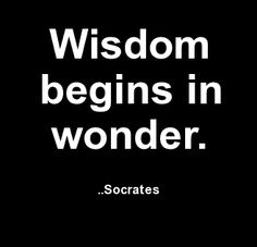 Wisdom begins in wonder. Socrates. It's why kids ask questions & I answer! !