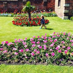Today's weather has been confusing to say the least! We have totally had every season possible today!  This is how our afternoon started , bright , sunny , and warm - ish ... ........ #EthanNicholasTaylor #BeautifulGardens #Gardens #Pretty #Flowers #Scopio_Home #Essex #EnglishWeather #ColchesterCastle #CastlePark #Scenic #Scenery #MomBlogger #MumBlogger