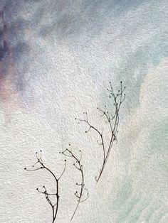 Irene Navarra / Visioni: Haiku / Noterelle un po' critiche. Con determinazi...