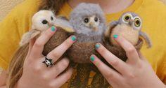 Needle Felting Tutorial with Laura Lee Burch: Hoot owls Felt Owls, Felt Birds, Needle Felted Owl, Needle Felting Tutorials, Sock Animals, Baby Owls, Cute Owl, Wet Felting, Felt Art