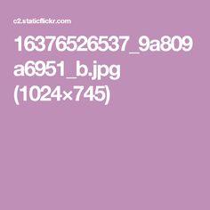16376526537_9a809a6951_b.jpg (1024×745)