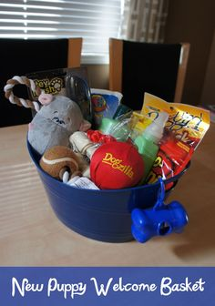 Diy gift basket idea for dogs for christmas or for use at a a welcome basket for doobie dog gift basketseaster negle Images