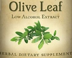 All Natural OLIVE LEAF Herbal Tincture for Energy Healthy Blood Pressure Cardiovascular & Immune Support