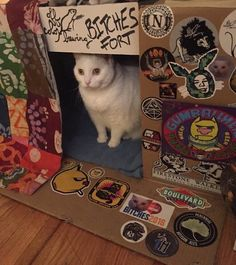 Brenda Roudebush (@GhostAtTheGate) | Twitter Toy Collector, Lost & Found, I Love Cats, Vintage Toys, Goth, Kitty, Halloween, Twitter, My Love