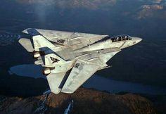 """USN F-14 Tomcat """"Pukin' Dogs"""""""