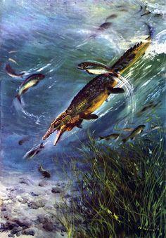 Mosasaurus by Zdenek Burian (1962)