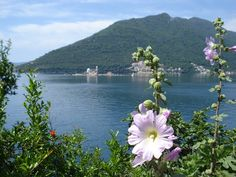 Adriatic Sea, River, Outdoor, Outdoors, Outdoor Games, Outdoor Life, Rivers