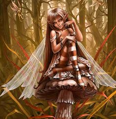 Elves Faeries Gnomes
