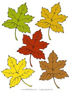 Igraem 4 - Aleiga V. Autumn Crafts, Nature Crafts, Autumn Nature, Autumn Leaves, Diy And Crafts, Crafts For Kids, Paper Crafts, Pocket Scrapbooking, Leaf Logo