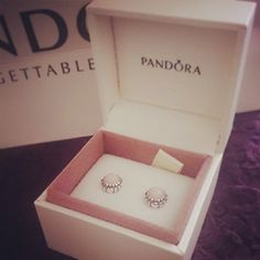 Pandora Earrings<3