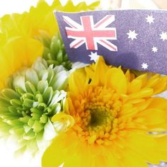 The Australia Day long weekend - our favourite (extra) long weekend on the calendar... Come in on Sunday when we have Facepainting on for the kids #OGH #oceangrovehotel #bellarinepeninsula #happyaustraliadayweekend by oceangrovehotel http://ift.tt/1JO3Y6G