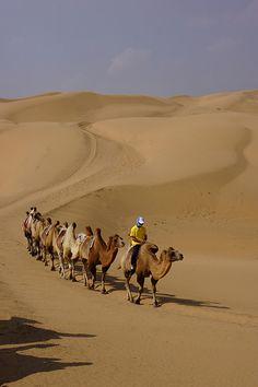 Inner Mongolia Desert.                                                                                                                                                                                 More