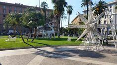 Questi sono gli addobbi di piazza Cavour, con renne e albero di Natale. Si è sparsa la voce che la Raggi non mangerà il panettone, così si portano avanti con il lavoro