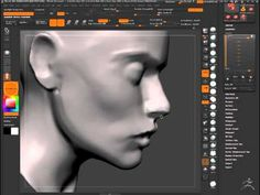 This is another sped of version of someone creating a head sculpt , which may prove useful when I use the concepts of this one and the other one to see what feels comfortable to me.
