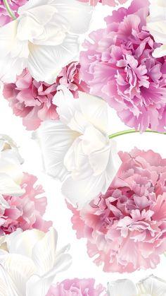 Flowers wallpaper iphone cartoon 31 Ideas for 2019 Cute Flower Wallpapers, Flower Backgrounds, Pretty Wallpapers, Wallpaper Backgrounds, Floral Wallpapers, Desktop Wallpapers, Wallpaper Ideas, Floral Wallpaper Iphone, Flowery Wallpaper