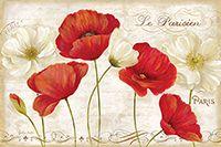 RB6798CC <br> Paris Poppies Landscape <br> 24x36