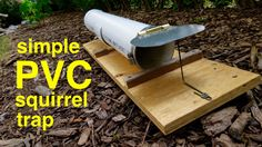 DON'T MISS THE UPDATE AT THE END !! Make this simple PVC humane squirrel trap that's live release. Easy to build, easy to bait, easy to release and best of a...