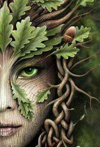 The Significance of Green Green has been known for untold ages as the colour of the fairy. Green was so universally recognised, as the colour of the fairy that many in Scotland refused to wear it a… Fantasy Creatures, Mythical Creatures, Connemara, Celtic Art, Celtic Fantasy Art, Fairy Art, Colouring Pages, Coloring Books, Mother Earth