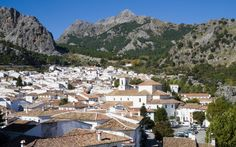 Natural Park of Sierra de Grazalema, 5 km away from the village of Grazalema for which the park is named after; and only 20 kilometres from the famous Ronda, a must see in Andalucia