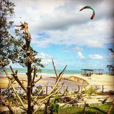 Na Bahia nunca se sabe onde e quando o vento vai entrar... Mas sempre é mágico qdo acontece... Vale sempre levar o equipamento ... #nexttime #vadeogio #kite #kitetrip #viajar #love #instagood #riderapp #deboraheluizpaulo #trancoso #praiadoespelho #kitesurf #esporte #enjoy #bahia #weekend #trip