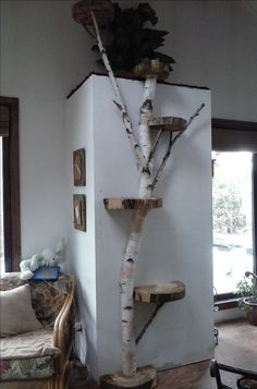 White Birch wall cat tree. Could put photos on the stumps and make it a display.                                                                                                                                                                                 More