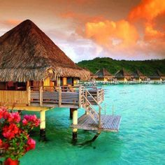 I wanna go to Tahiti someday ...