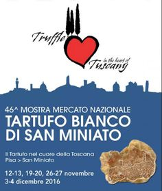 2016 - 2016 - Mostra Mercato Nazionale del Tartufo Bianco National White Truffle Exhibit and sale Nov. 12-13, Nov. 19-20, and Nov. 26-27, in San Minia¬to (Pisa). White truffle and many other local specialties exhibit and sale; old trades exhibits. Slow food work-shops; antique market in Piazza Dante. Prize for the largest truffle and the oldest truffle hunter.