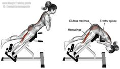 One leg hyperextension. A compound exercise. Target muscles: Hamstrings and Erector Spinae. Synergistic muscles: Gluteus Maximus and Adductor Magnus.