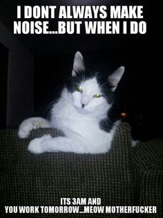 I don't always make noise…
