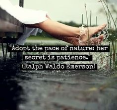 """""""Adopt the pace of nature: her secret is patience."""" - Ralph Waldo Emerson"""