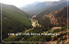 bun venit la rock club borsa maramures transilvania romania - free camping