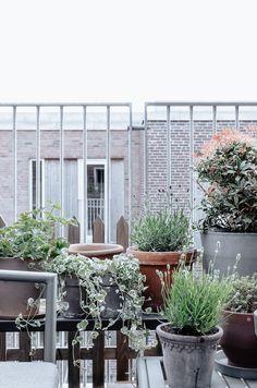 My Copenhagen Balcony Update – Bungalow5