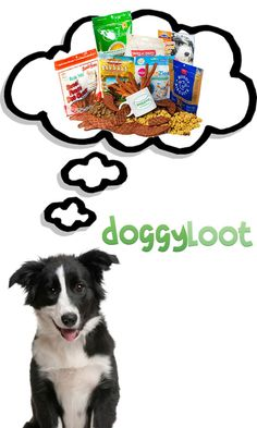 Discover tough toys and USA-made treats for your dog at up to 75% off!