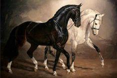 Jaime Corum Equine Art The Flirt oil on canvas 24 x 36 Pretty Horses, Horse Love, Beautiful Horses, Animals Beautiful, Beautiful Horse Pictures, Horse Drawings, Animal Drawings, Horse Artwork, Cross Paintings