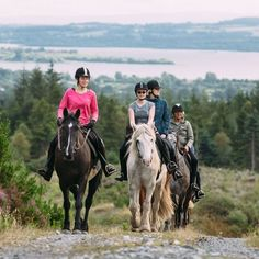 Become a Host Family Ireland - Hebe Adventures English Study, English Lessons, What Is Outline, School Terms, Language Immersion, English Summer, Conversational English, Irish Culture, Improve Your English
