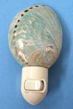 Polished Green Abalone Nightlight,