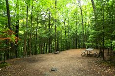 Silent Lake Provincial Park, Granit Ridge, Camping in Ontario Parks Ontario Parks, Country Roads, Camping, Plants, Summer, Campsite, Summer Time, Plant, Campers