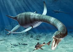 A polycotylus latippinus plesiosaur gives birth some 80 million years ago in an artist's conception.